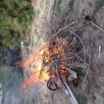 On a brûlé pendant deux journées